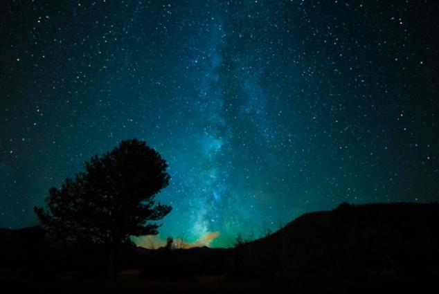 cosmos-filcatholic-environment