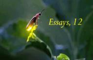 Essays, 12